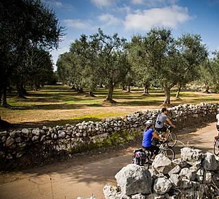 Salento Bike Tours...and food&wine tasting Hotel