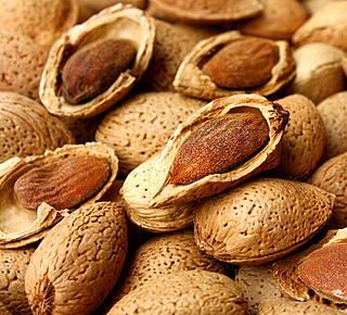 Discovering Avola's almonds Hotel