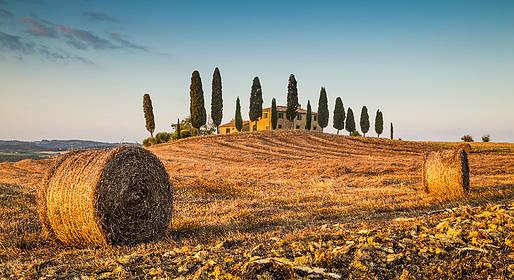 Tuscany Art & Wine Tour
