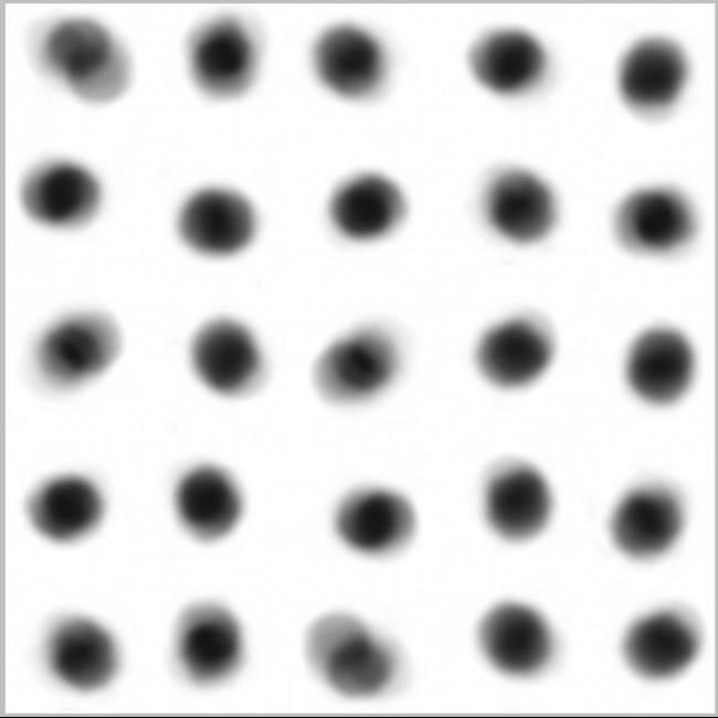 Hypertrait (Pollen Recorded) N.764