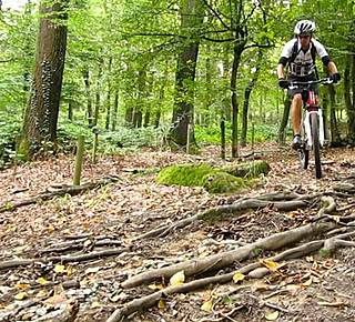 Walks, Trails and MTB 10 minutes from the city ... Hotel