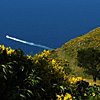 Monte Solaro - Cetrella