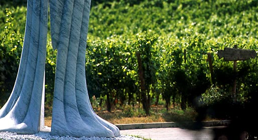 Art between the vines