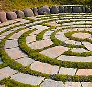 Il labirinto dei vigneti