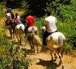 Horse trekking in Tuscany Hotel