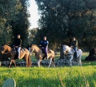 Passeggiate a cavallo al Maneggio Parco di Mare Hotel