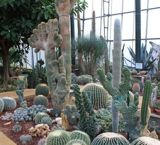 Masseria Botanic Garden La Cutura Hotel