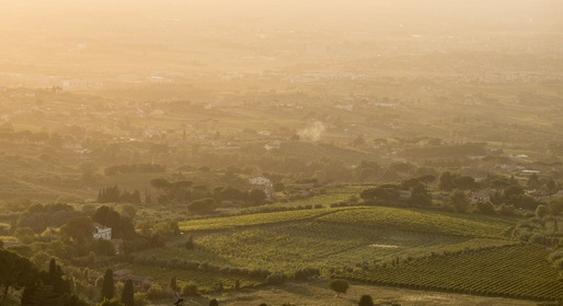 Frascati, Rome's Wine Country