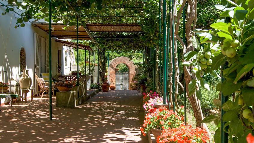 Villa dei Fiori Bed & Breakfast Capri