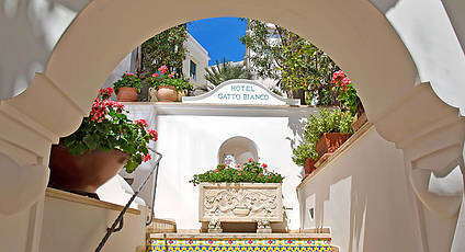 Hotel Gatto Bianco & Spa