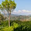 Villa Nuba Charming Apartments Perugia