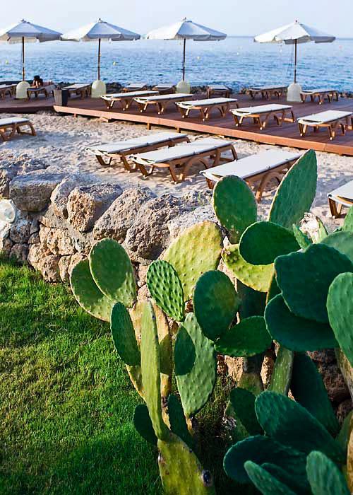 Savelletri Di Fasano Italy  City new picture : San Domenico a Mare Savelletri di Fasano e 48 hotel selezionati nei ...