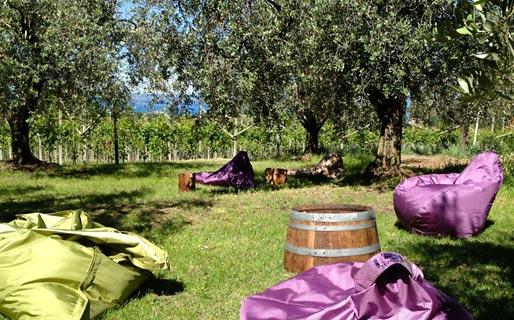 Tenuta La Pergola Farmhouse Holidays Bardolino