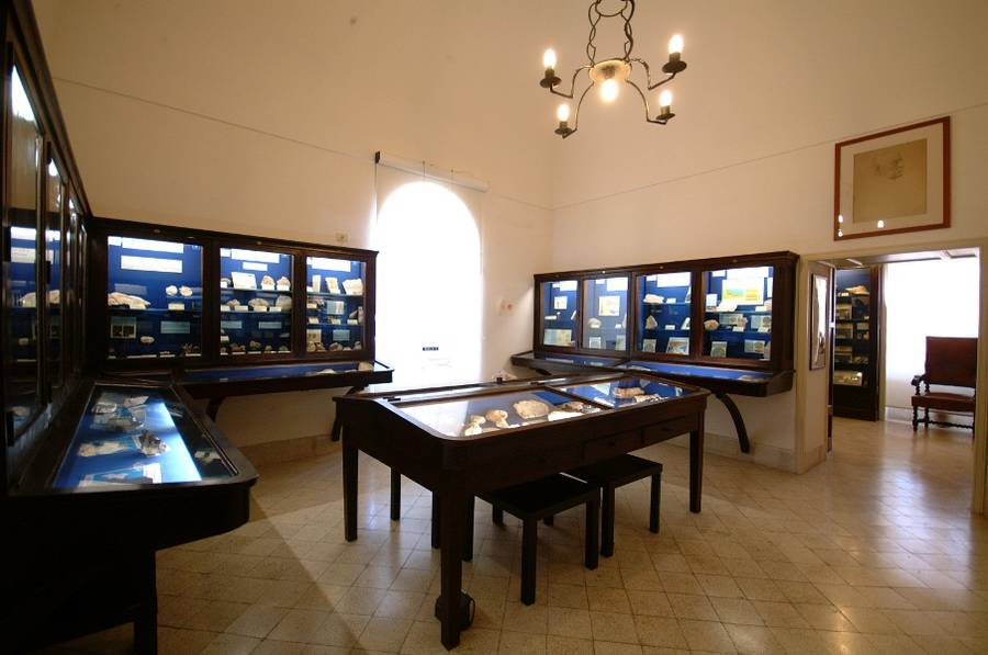 Centro Caprense Ignazio Cerio A Capri  Tutta La Storia Di