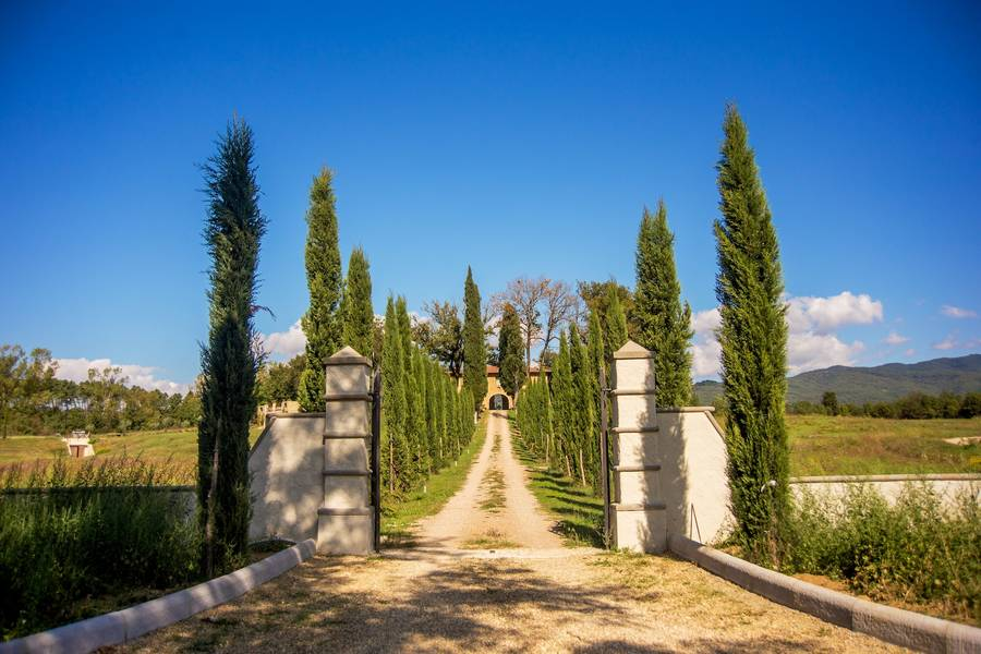 Canto Alla Moraia Castiglion Fibocchi And 94 Handpicked