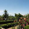 Villa Damecuta Anacapri