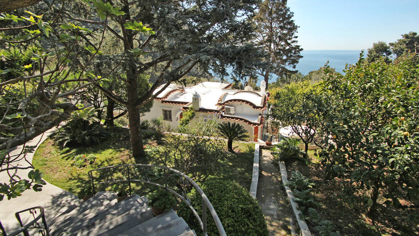 Casa Augusto Bed & Breakfast Capri