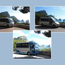 Capri Transfers - Minibus a disposizione - Full Day