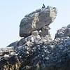 Gianni's Boat - Special Spring in Capri: Faraglioni and White Grotto