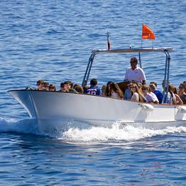 Gruppo Motoscafisti - Excursão de barco em Capri + Gruta Azul - Yellow Line