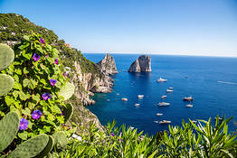 Nesea Cultural Events - The Island of Capri for All Five Senses