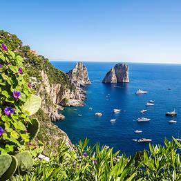 Nesea Eventi Culturali - Capri 5 sensi