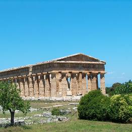 Sorrento Limo - Tour of Paestum + mozzarella experience