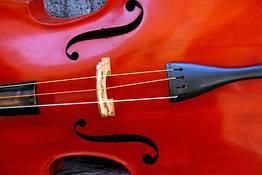 Caprionline - Violin Concert by Federica Tranzillo