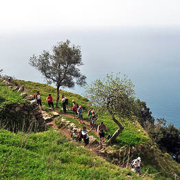Hiking Guide for Groups (20 - 40 PAX)