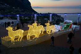 Capri Online - Concert