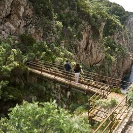 Tour naturalistico al Sentiero dei Fortini