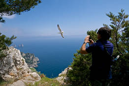 Capri Official Guides - From the Migliera lookout to the Guardia watchtower