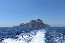 Capri Boat Service Transfer  - From Capri to Ischia by Private Speedboat Transfer