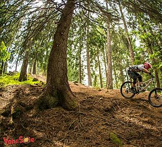 Downhill e Enduro bike Hotel