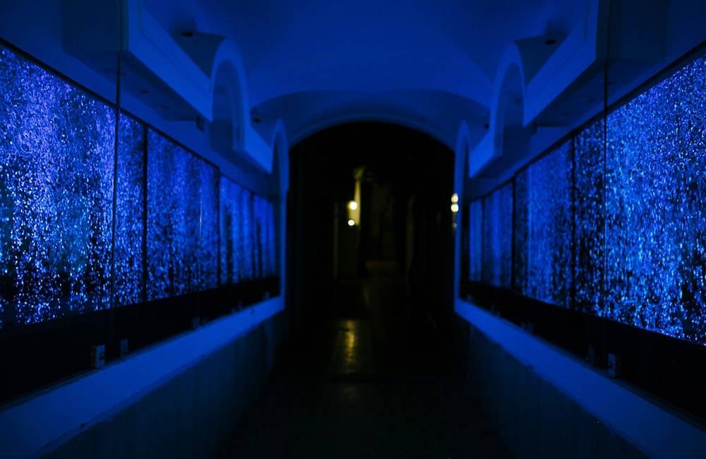 Percorso di luce - Le otto fontane