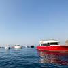 Yacht - Lady L