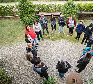 SYNERGIC ORGANIC AGRICULTURE COURSES Hotel