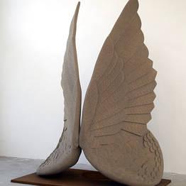 """Senza Titolo"" - Wings"