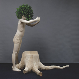 Christian Verginer - Missing Nature
