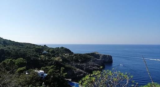 Capri, grande partecipazione alla terza «Camminata tra gli olivi»