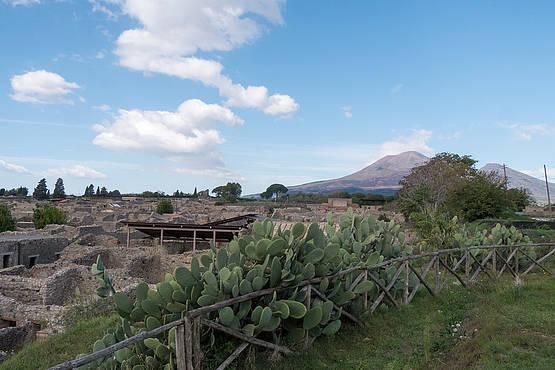 How to Visit Pompeii and Mt. Vesuvius from Capri