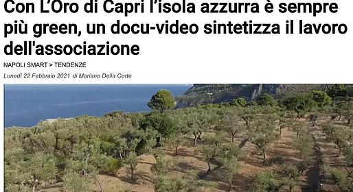 Anche Il Mattino elogia Oro di Capri