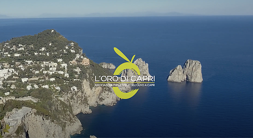 "Anacapri city of oil in the docufilm realized for ""L'Oro di Capri""  for its 7th anniversary"