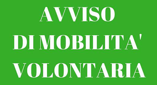 Avviso Mobilità Volontaria - ex articolo 30 D.Lgs 165/2001 per copertura di 2 posti tempo pieno e indeterminato  Categoria D1 per Settore Area economico – Finanziaria