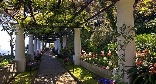 Capri - Villa San Michele - Info & Foto