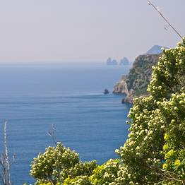 A baía de Ieranto