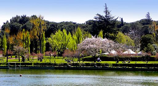 Le oasi nel verde di Roma