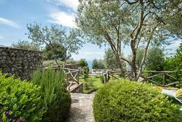Classic Garden View
