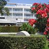 Rada Siri Hotel Montepaone Lido
