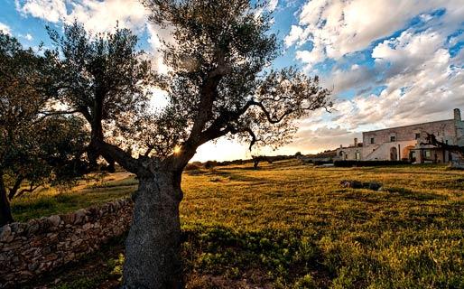 Masseria Le Fabriche 4 Star Hotels Maruggio